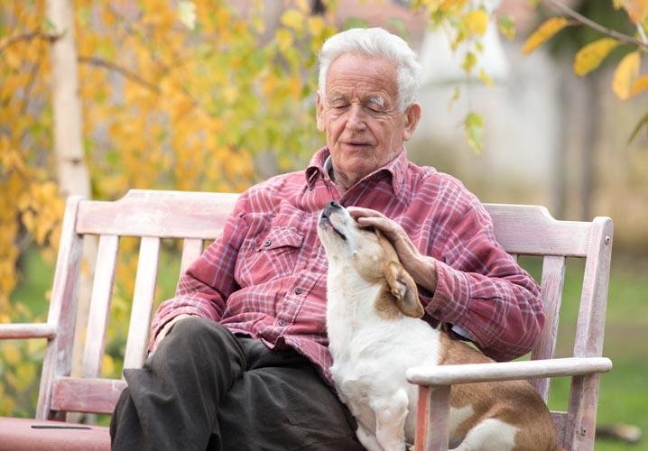 animali da compagnia per anziani